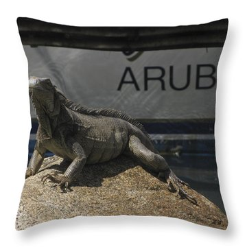 Throw Pillow featuring the photograph Iguana by David Gleeson
