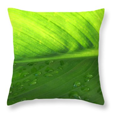 Illuminate Throw Pillow by Angela Hansen
