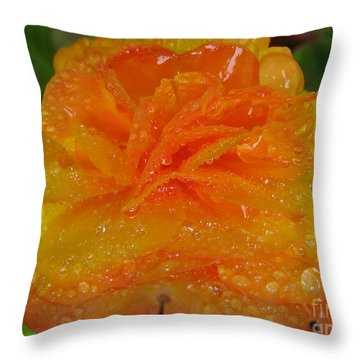 Throw Pillow featuring the photograph Illuminate Photography by Tina Marie