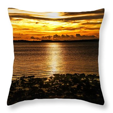 Illuminated Throw Pillow by Christopher Holmes
