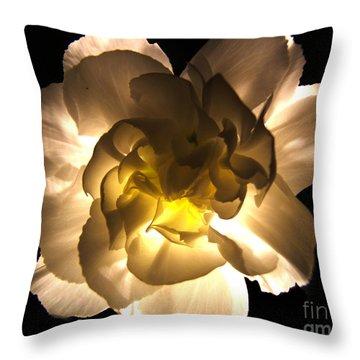 Illuminated White Carnation Photograph Throw Pillow