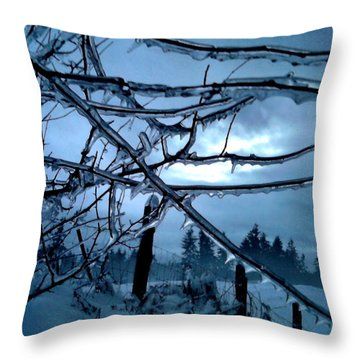 Throw Pillow featuring the photograph Illumination by Rory Sagner
