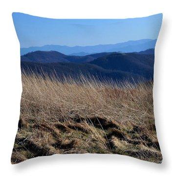Illumined Throw Pillow