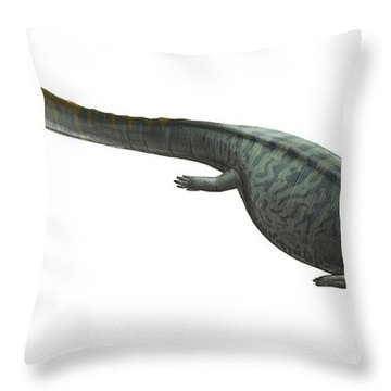 Illustration Of A Prehistoric Era Throw Pillow by Sergey Krasovskiy