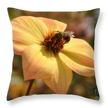 Throw Pillow featuring the photograph Im Just So Busy   Winter Is Coming Soon  by Elaine Manley