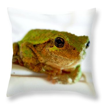 Throw Pillow featuring the photograph Im Watching You by Peggy Franz