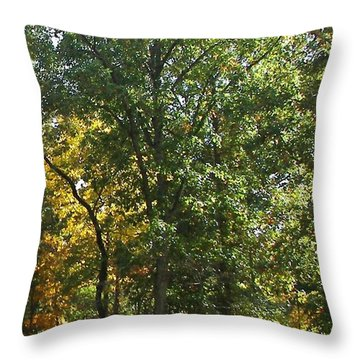 Throw Pillow featuring the photograph Image Of Fall by Pamela Hyde Wilson