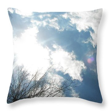 Throw Pillow featuring the photograph Imagination by Pamela Hyde Wilson