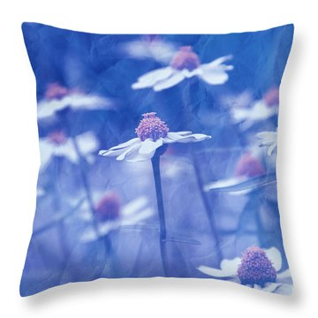 Imagine 06ht01 Throw Pillow by Variance Collections