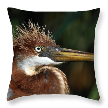 Immature Louisiana Hair Day Throw Pillow by Skip Willits
