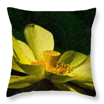 Throw Pillow featuring the photograph Impasto Lotus by Travis Burgess