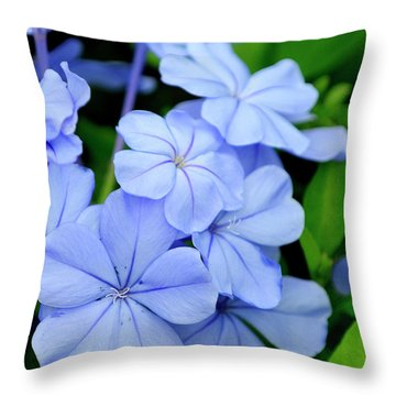 Imperial Blue Throw Pillow