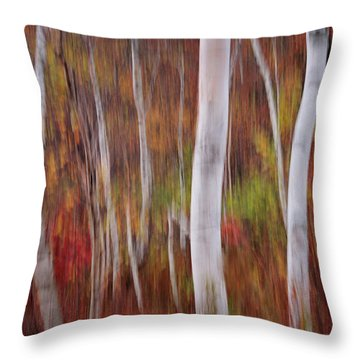Abstract Impressions Vermont Birch Forest  Throw Pillow