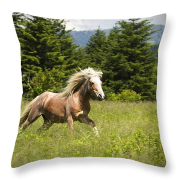 In A Hurry Throw Pillow by Carrie Cranwill