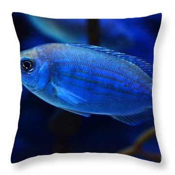 In Blue Waters Throw Pillow by Pravine Chester