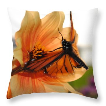 Throw Pillow featuring the photograph In Flight... by Michael Frank Jr