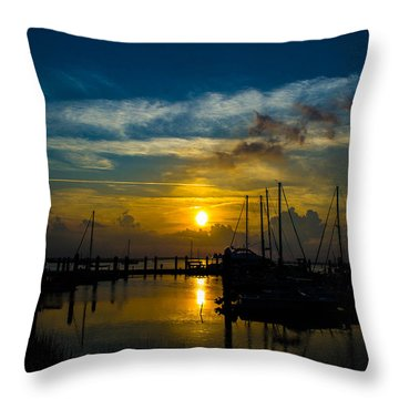 In For The  Night Throw Pillow by Shannon Harrington