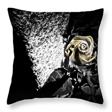 In Harmony Throw Pillow by Jessica Brawley