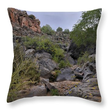 Throw Pillow featuring the photograph In The Arroyo   by Ron Cline