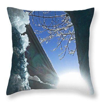 Throw Pillow featuring the photograph In The Cold Of The Sun by Steve Taylor