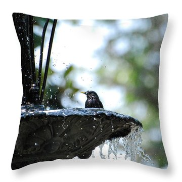 Throw Pillow featuring the photograph In The Cool Of The Morning #1 by Linda Cox