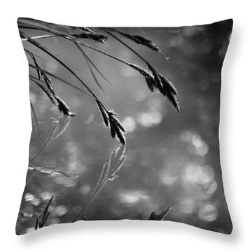 In The Early Morning Hours Throw Pillow