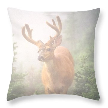 In The Mist Throw Pillow
