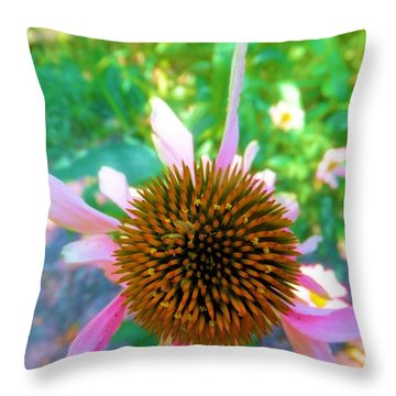 Throw Pillow featuring the photograph In The Pink by Carolyn Repka