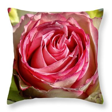 In The Pink Throw Pillow by Lauri Novak