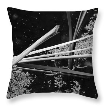 In The Pond Asian Influence Throw Pillow by Kathleen Grace