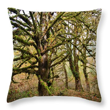 In The Rain Forest Throw Pillow