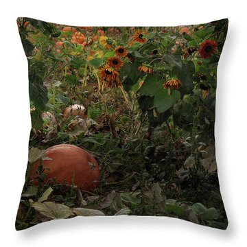 In The Shades Of An Autumn Sky Throw Pillow