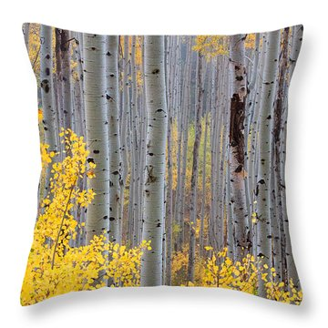 Throw Pillow featuring the photograph In The Thick Of Things by Jim Garrison
