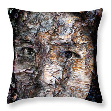In Transition Throw Pillow by Christopher Gaston