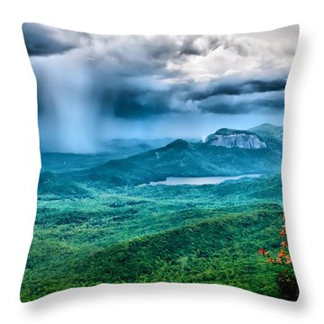 Incoming Storm Throw Pillow by Lynne Jenkins