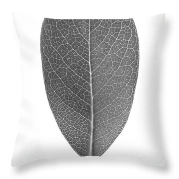 Indian Hawthorn Leaf Throw Pillow