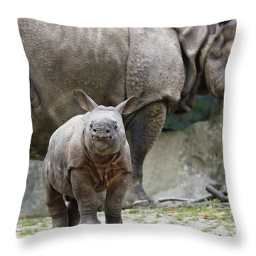 Indian Rhinoceros Rhinoceros Unicornis Throw Pillow by Konrad Wothe