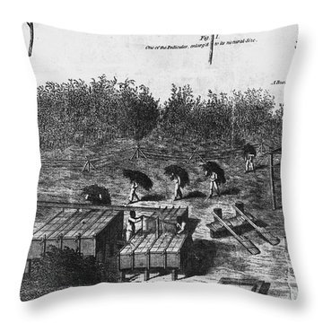 Indigo Culture Throw Pillow by Photo Researchers