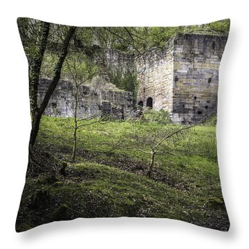 Industrial Ruin Throw Pillow by Amanda Elwell