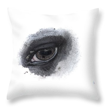 Indys Eye Throw Pillow