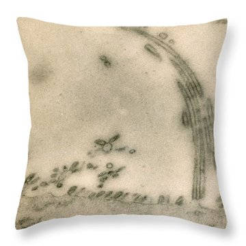 Influenza Virus Throw Pillow