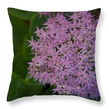 Throw Pillow featuring the photograph Inner White by Joseph Yarbrough