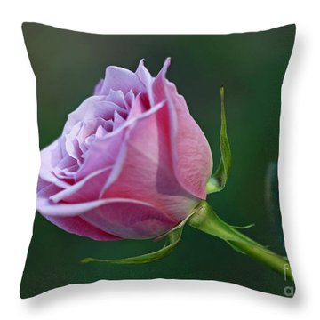 Innocence At Sunrise- Pink Rose Blossom Throw Pillow by Inspired Nature Photography Fine Art Photography