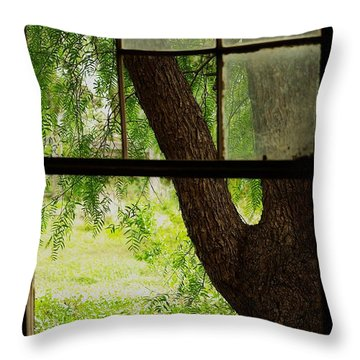 Throw Pillow featuring the photograph Inside Looking Out by Blair Stuart