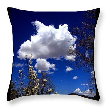 Throw Pillow featuring the photograph Inside The Mind Of Spring by Susanne Still