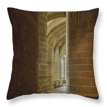 Throw Pillow featuring the photograph Inspiration by Marta Cavazos-Hernandez