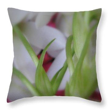Interwoven Throw Pillow by Tina Marie