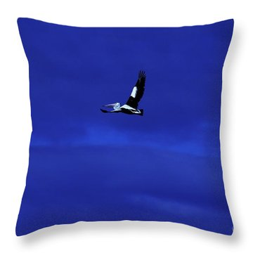Throw Pillow featuring the photograph Into The Blue by Blair Stuart