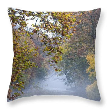 Into The Mist Throw Pillow by Bill Cannon