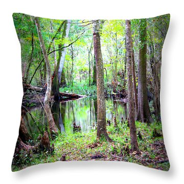 Into The Swamp Throw Pillow by Carol Groenen